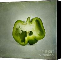 Nostalgic Digital Art Canvas Prints - Cut green bell pepper Canvas Print by Bernard Jaubert