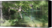 Wimberley Canvas Prints - Cypress Creek Wimberley Canvas Print by Leonard Quaglio Jr