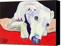 Greyhound Canvas Prints - Cyrus Canvas Print by Pat Saunders-White