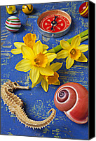 Blue Point Canvas Prints - Daffodils and Seahorse Canvas Print by Garry Gay