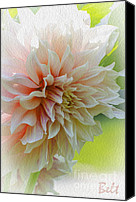 Nature Flowers Canvas Prints - Dahlia Waves Canvas Print by Christine Belt