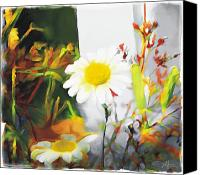 Daisies Flowers Canvas Prints - Daisies Canvas Print by Bob Salo