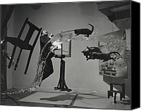 Fine Arts Canvas Prints - Dali  Atomicus By Philippe Halsman Canvas Print by Everett