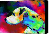 Gifts Digital Art Canvas Prints - Dalmatian Dog Portrait Canvas Print by Svetlana Novikova