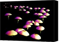 Toadstools Canvas Prints - Dancing in the Dark Canvas Print by John Foote