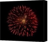 4th July Canvas Prints - Dandelion on Fire Canvas Print by Vijay Sharon Govender