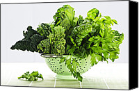 Swiss Canvas Prints - Dark green leafy vegetables in colander Canvas Print by Elena Elisseeva
