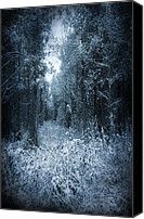 Creepy Canvas Prints - Dark Place Canvas Print by Svetlana Sewell