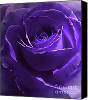 Purple Flowers Canvas Prints - Dark Secrets Purple Rose Canvas Print by Jennie Marie Schell