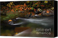 Skate Photo Canvas Prints - Dark Water Autumn Canvas Print by Mike  Dawson
