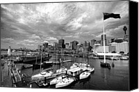 Black And White Yacht Canvas Prints - Darling Harbor- Black and White Canvas Print by Douglas Barnard