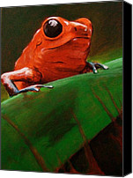 Photo-realism Canvas Prints - Dart Frog Canvas Print by Brian Carlton