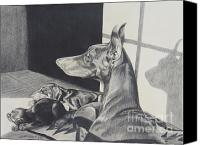 Doberman Prints Canvas Prints - Day Dreams Canvas Print by Cynthia Riley