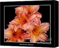 Father Christmas Canvas Prints - Daylilies 2 Canvas Print by Rose Santuci-Sofranko