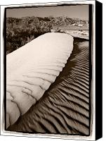 Death Valley National Park Canvas Prints - Death Valley Sand Dune Canvas Print by Steve Gadomski