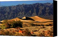 East Canvas Prints - Death Valleys Mesquite Flat Sand Dunes Canvas Print by Christine Till