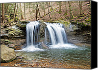 Buy Photos Online Canvas Prints - Debord Falls Canvas Print by Steven  Michael