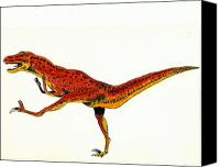 Prehistoric Canvas Prints - Deinonychus Canvas Print by Michael Vigliotti