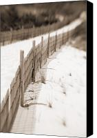 Sand Fences Canvas Prints - Delaware Dunes Number Fourteen Canvas Print by Bob Coates