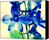 Garden Flowers Canvas Prints - Delphinium Canvas Print by Cathie Tyler