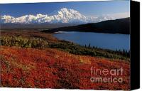 Denali Canvas Prints - Denali Evening Canvas Print by Sandra Bronstein