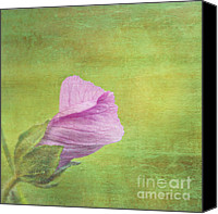 Pink Flower Canvas Prints - Deploiement - 01ct02b Canvas Print by Variance Collections