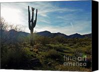 2hivelys Art Canvas Prints - Desert Afternoon Canvas Print by Methune Hively