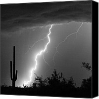 Insogna Canvas Prints - Desert Striking in Black and White Canvas Print by James Bo Insogna