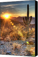 Cactus Canvas Prints - Desert Sunset Canvas Print by Eddie Yerkish
