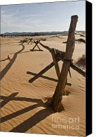 Coral Pink Sand Dunes Canvas Prints - Desolate Canvas Print by Heather Applegate