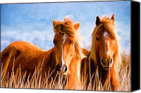 Wild Horses Canvas Prints - Deuces Wild Canvas Print by Steven Richardson