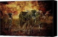 Cowboy Canvas Prints - Devils Herd - Texas Longhorn Cattle Canvas Print by Cindy Singleton