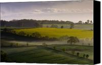 Rapeseed Canvas Prints - Devon Dawn Canvas Print by Neil Buchan-Grant