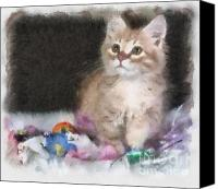 Kitten Greeting Card Digital Art Canvas Prints - Did Somebody Say Treat Canvas Print by Denise Oldridge