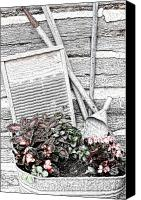 Log Cabin Canvas Prints - Digital Sketch Wash Tub and Flowers Canvas Print by Linda Phelps