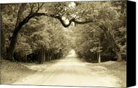 Dirt Roads Photo Canvas Prints - Dirt Road Home Canvas Print by Sean Cupp