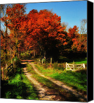 Fall Scenes Canvas Prints - Dirt Road to Anyplace Canvas Print by Thomas Schoeller