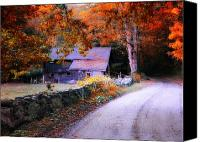 Country Dirt Roads Canvas Prints - Dirt Roads are Down to Earth Canvas Print by Thomas Schoeller