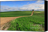 Dirt Roads Photo Canvas Prints - Dirt Roads Canvas Print by Reflective Moments  Photography and Digital Art Images