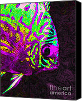 Angel Fish Canvas Prints - Discus Tropical Fish 2 Canvas Print by Wingsdomain Art and Photography
