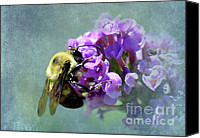 Bumblebees Canvas Prints - Diving In Canvas Print by Betty LaRue