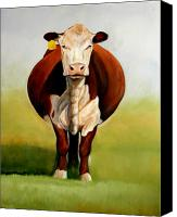 Cow Canvas Prints - Do I Look Fat Canvas Print by Toni Grote