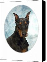 Doberman Prints Canvas Prints - Doberman Pinscher 100  Canvas Print by Larry Matthews