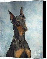Doberman Prints Canvas Prints - Doberman Pinscher 69 Canvas Print by Larry Matthews