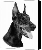 Dobermann Canvas Prints - Dobermann Canvas Print by Danguole Serstinskaja