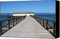 Boardwalks Photo Canvas Prints - Dock At Point Reyes Calfornia . 7D16123 Canvas Print by Wingsdomain Art and Photography