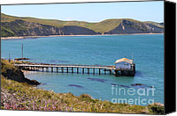 Boardwalks Photo Canvas Prints - Dock At Point Reyes Calfornia . 7D16133 Canvas Print by Wingsdomain Art and Photography