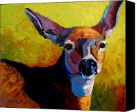 Deer Canvas Prints - Doe Portrait V Canvas Print by Marion Rose