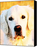 Lovers Digital Art Special Promotions - Dog Art - Golden Moments Canvas Print by Sharon Cummings