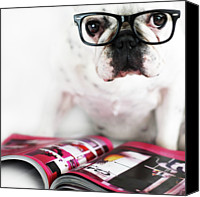 French Bulldog Canvas Prints - Dog With Glasses Canvas Print by Retales Botijero